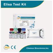 Xét nghiệm Beta-HCG
